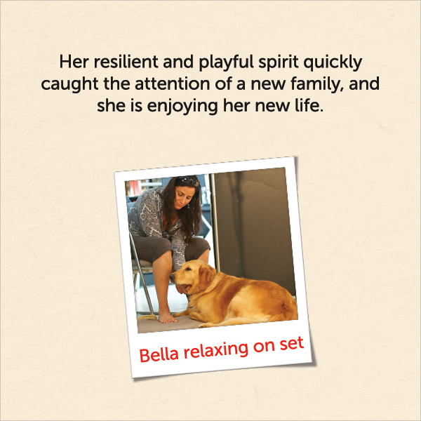 Her resilient and playful spirit quickly caught the attention of a new family, and she is enjoying her new life