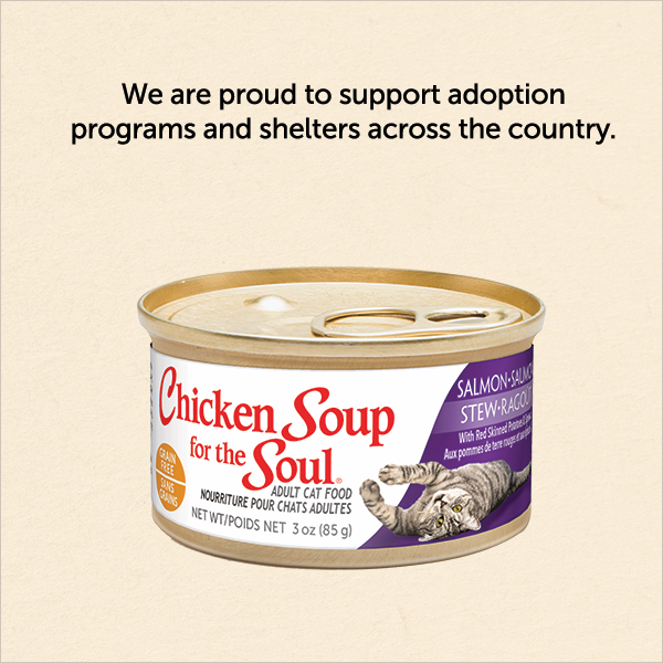 We are proud to support adoption
