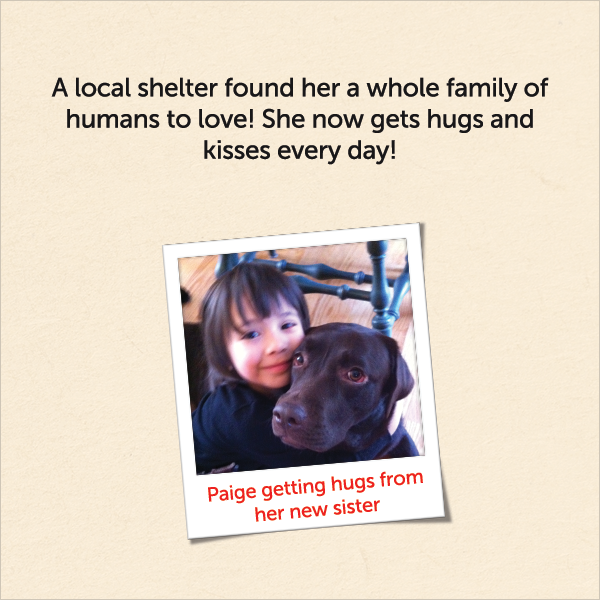 A local shelter found her a whole family of humans to love! She now gets hugs and kisses every day!