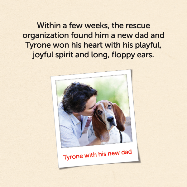 Within a few weeks, the rescue organization found him a new dad and Tyrone won his heart with his playful, joyful spirit and long, floppy ears