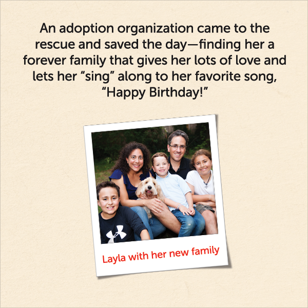 An adoption organization came to the rescue and saved the day, finding her a forever family that gives her lots of love and lets her sing along to her favorite song, Happy Birthday