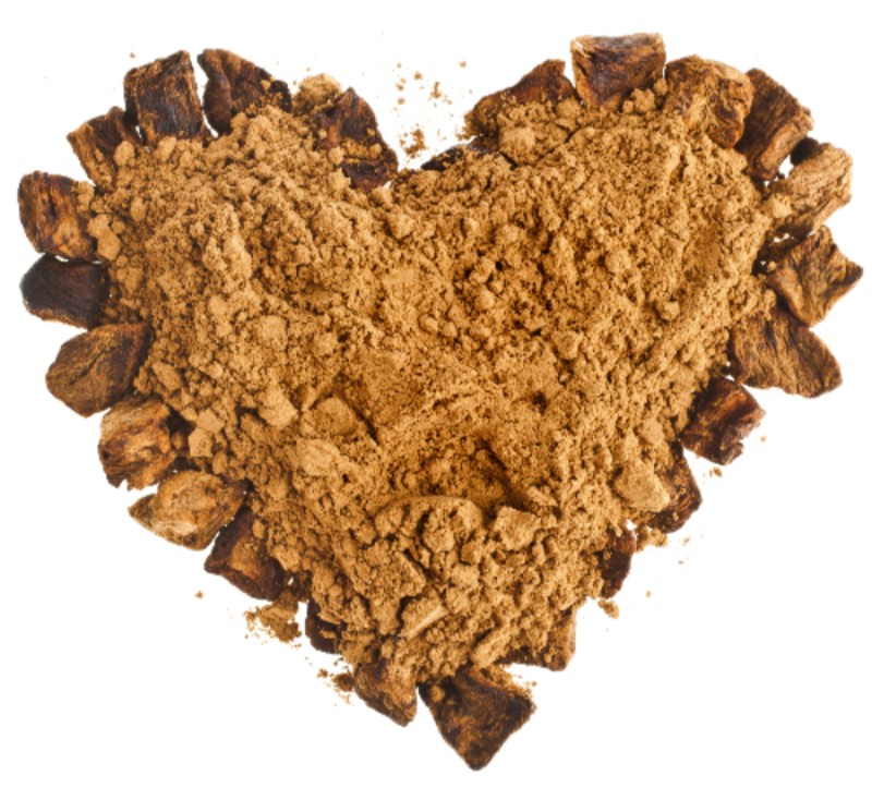 Dried Chicory Root In Dog Food