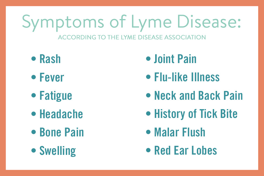 Symptoms of Lyme Disease infographic