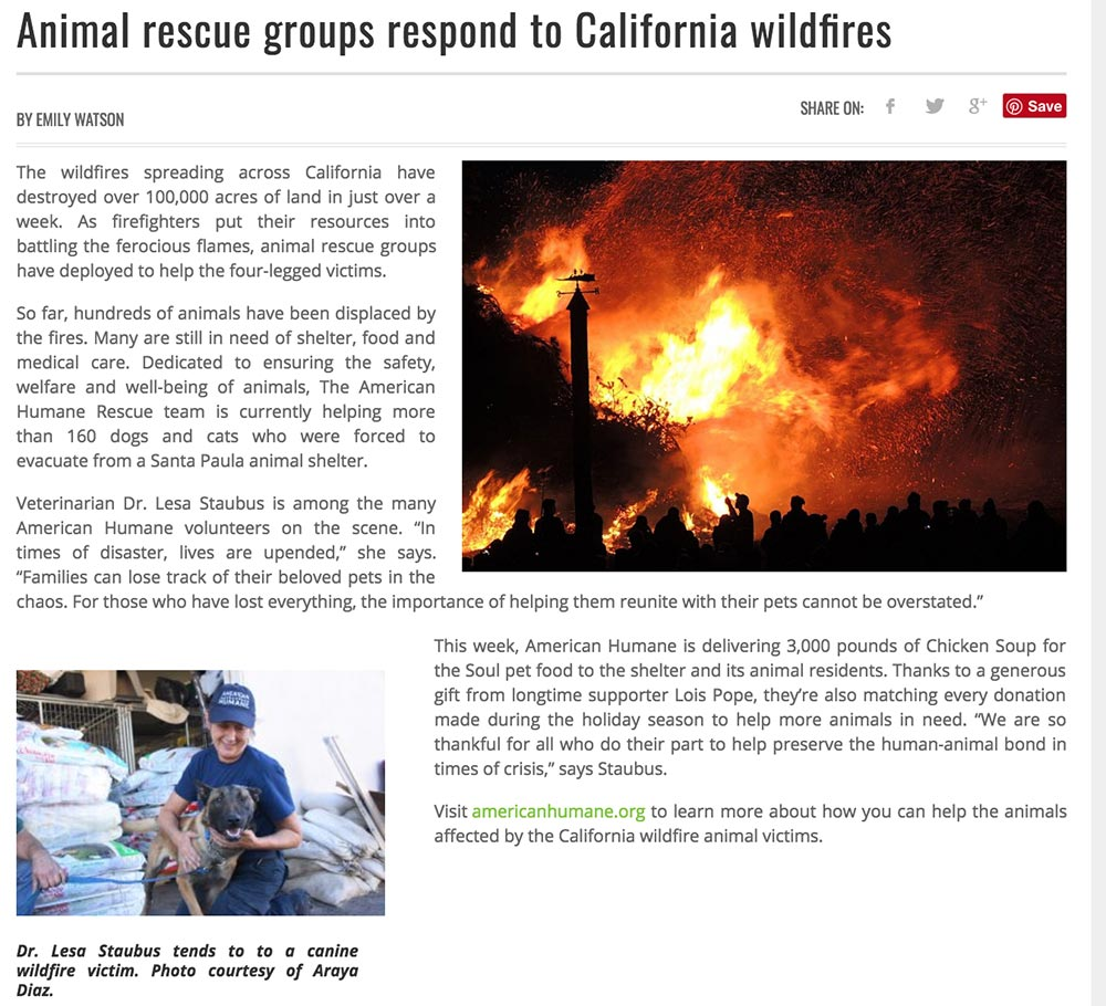 American Humane wildfire article image