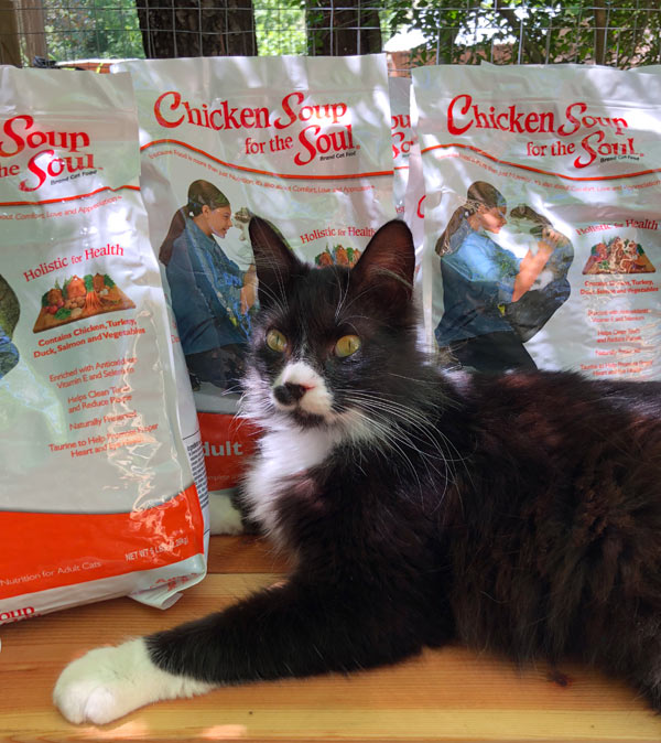 FABFAS cat food and cat image