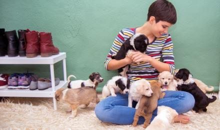 Woman playing with new puppies