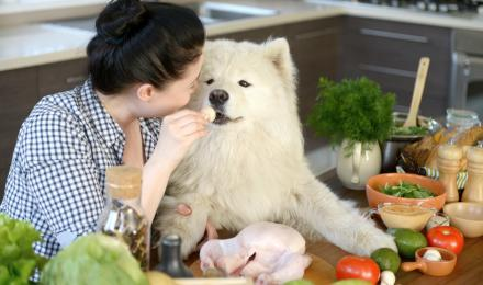 Woman feeding dog vegetables