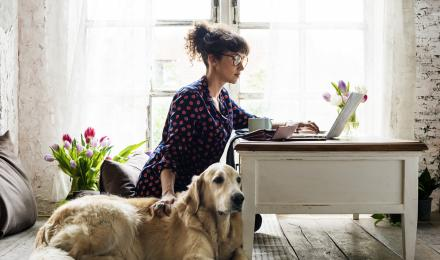 dog mom on computer and petting dog