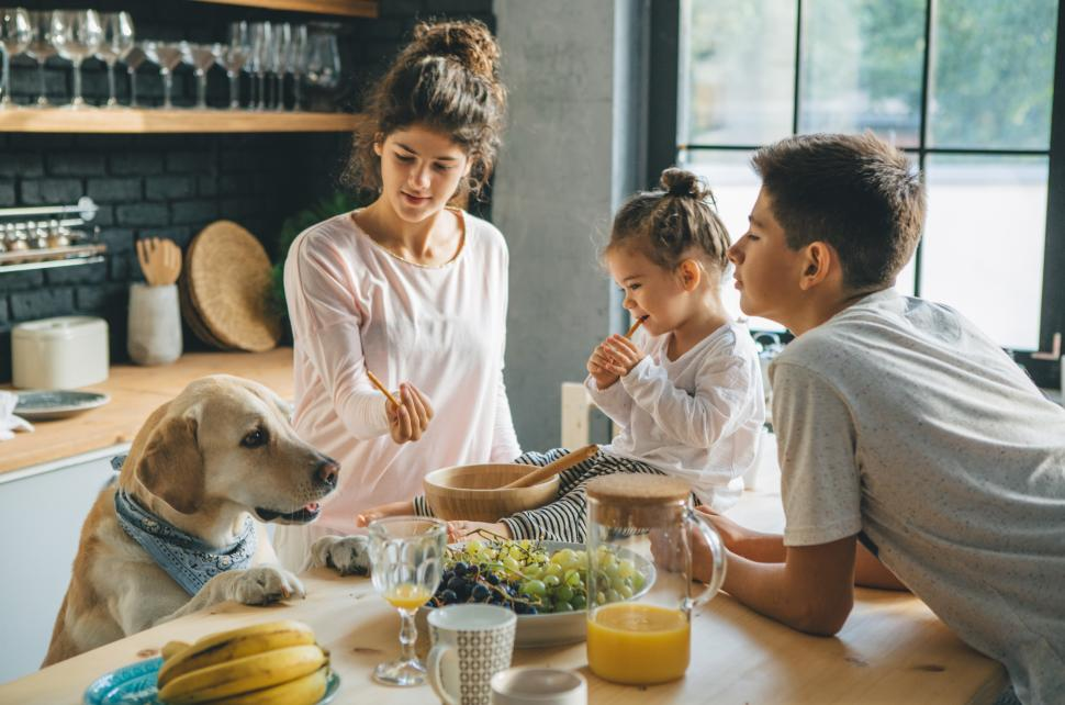 Kids and dog having snack time in the kitchen